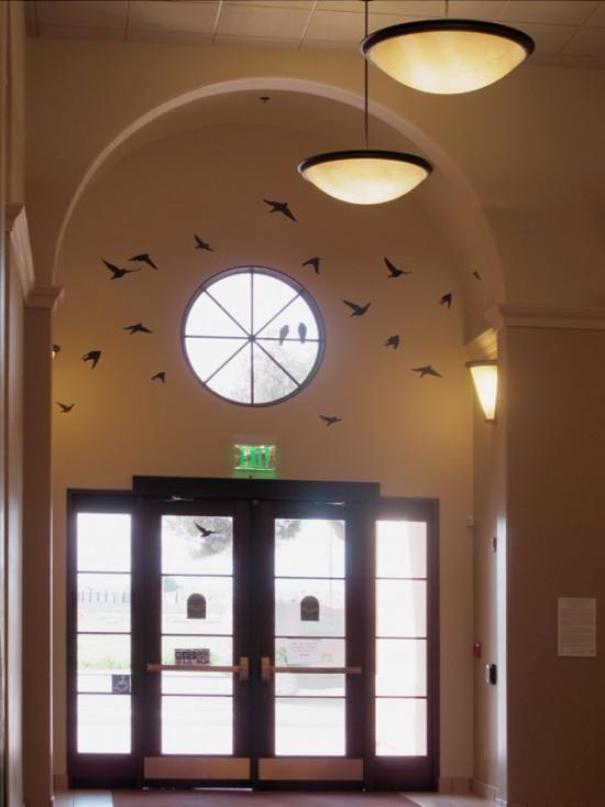 Birds in Transit